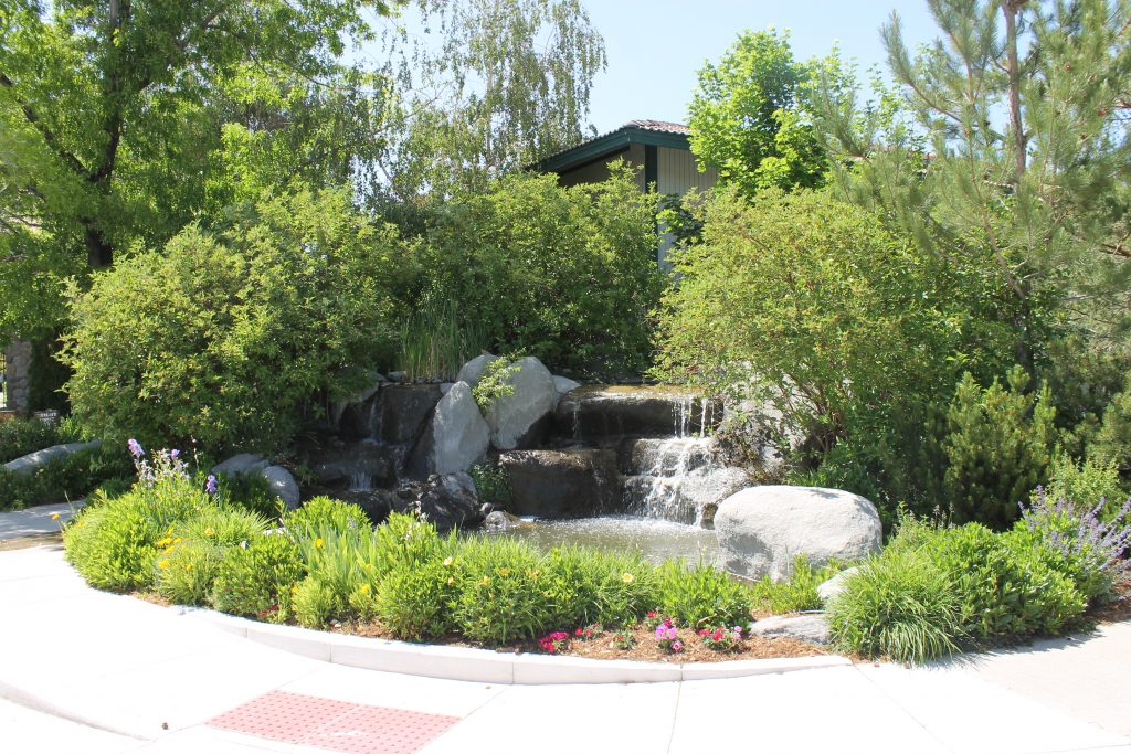 Front Entrance Waterfall Feature